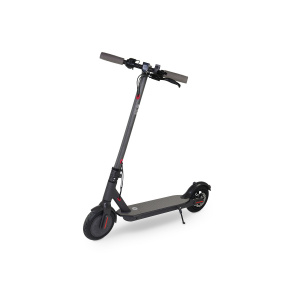 E-SCOOTER SPC BUGGY 5