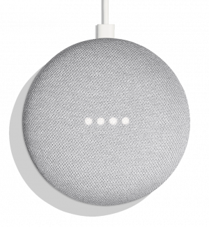 GOOGLE HOME MINI TIZA ALEMAN 1