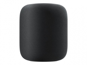 APPLE HOMEPOD GRIS ESPACIAL 1